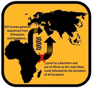 African dispersal