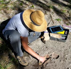 wentz excavation shot